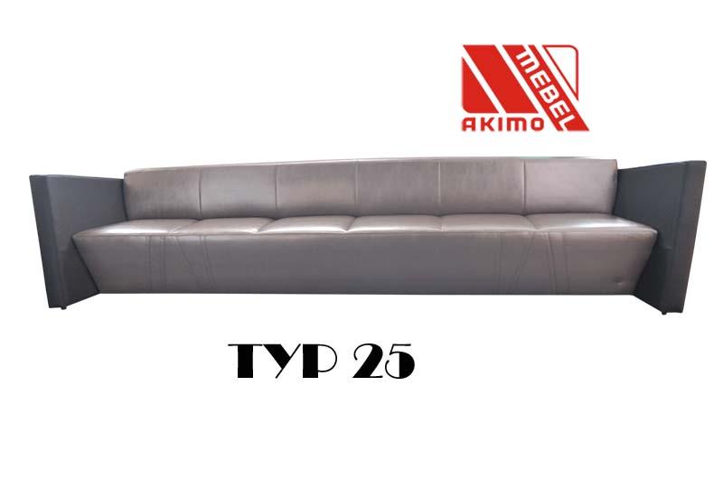 Typ 25