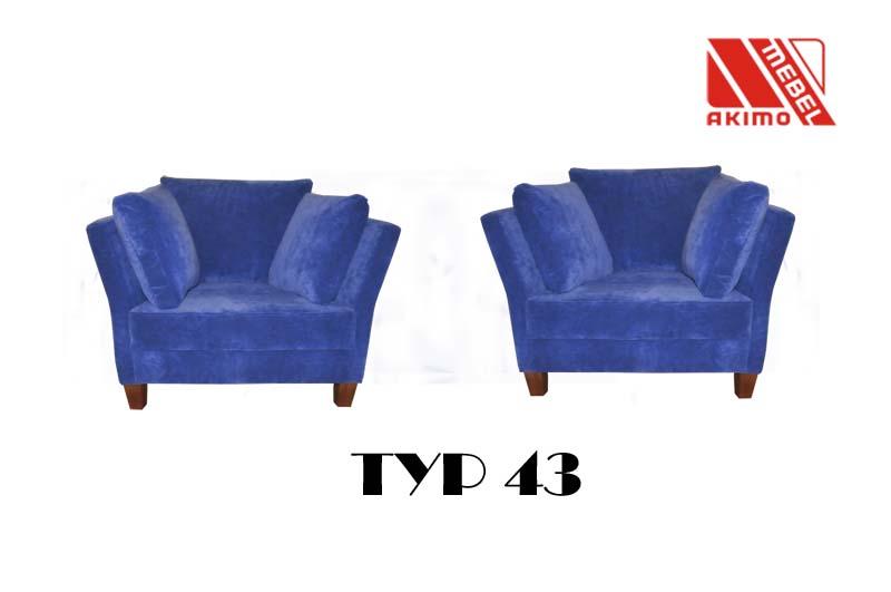 Typ 43